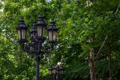 street light in park - stock photo