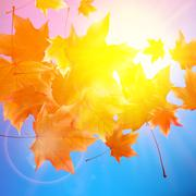 Delicate autumn sun with glare on blue sky. - stock illustration