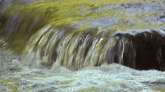 Drinking water from rushing stream Stock Footage