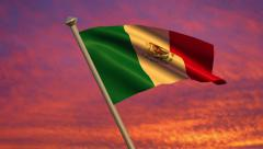 Mexican Flag Animation Stock Footage
