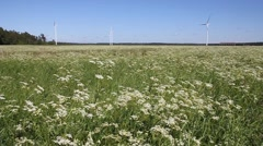 Windmills spinning in the field on a sunny summer afternoon. Stock Footage
