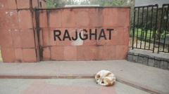 Raj Ghat Wall Stock Footage