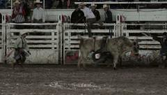 Rodeo bull ride cowboy thrown 4K 324 Stock Footage