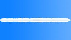 Crickets - sound effect