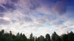 Clouds behind the trees in the forest. Moiseevichi, Valdaysky district,  Stock Footage