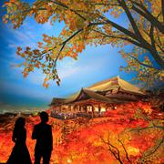 Couple stand there with nice background Stock Illustration