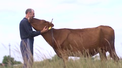Farmer graze his cow, fondles her and cares - stock footage