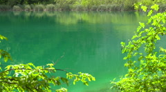 Turquoise lake, Plitivice Lakes National Park, Croatia Stock Footage