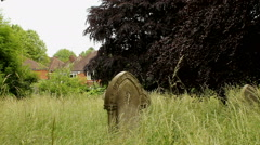 Neglected forgotten, overgrown with grass graves 2 - stock footage