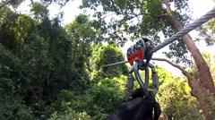 Tarzan in the jungle Thailand Stock Footage
