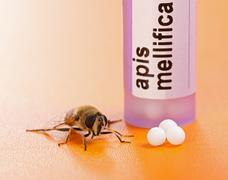 Apis mellifica homeopathic medication and bee Stock Photos