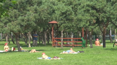 People getting tanned on green space inside park summer relaxation healthy hobby Stock Footage