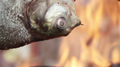 Pomfrets on an open fire Stock Footage