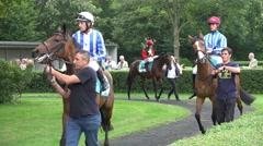 4k Racing horses with jockeys presentation Stock Footage