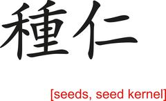 Chinese Sign for seeds, seed kernel - stock illustration