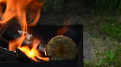 Brazier with burning firewood Stock Footage