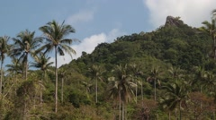 Landscape shot from a jungle Stock Footage