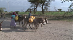 Donkeys transporting water containers, Africa Stock Footage