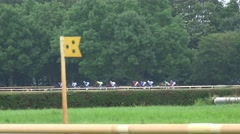 4k Horse Racing close up after curve Stock Footage