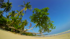 Tropical beach with palm trees in sunny day. Time lapse Stock Footage