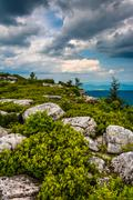 boulders and view of the appalachian mountains from bear rocks preserve, mono - stock photo