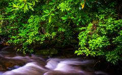 cascades on mingus creek, at great smoky mountains national park, north carol - stock photo