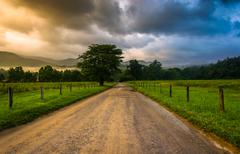 Dirt road on a foggy morning at cade's cove , great smoky mountains national  Stock Photos