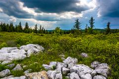 storm clouds over bear rocks preserve, monongahela national forest, west virg - stock photo