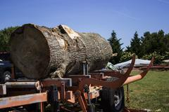 Large log positioned on portable sawmill Stock Photos