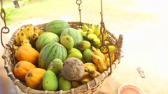 Close up view of fruit basket swinging in the wind in Weligama, Sri Lanka. Stock Footage