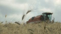 Farmer is working with harvesting equipment  in a field of wheat Stock Footage
