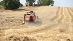 Working with harvester combine in a field of wheat in summer: farm, farmer Stock Footage