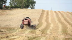 Farmer at work with modern combine in wavy filed: harvesting wheat Stock Footage