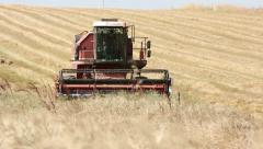 Wheat harvest with modern combine harvester, Harvesting equipment, countryside Stock Footage