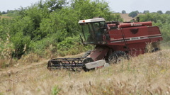Combine harvesting wheat in a farm: field, countryside Stock Footage