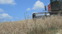Slow motion of combine harvesting field of wheat: farm, agriculture Stock Footage
