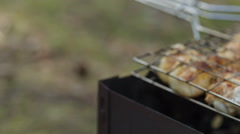 Preparing barbecue chicken, slider dolly move Stock Footage