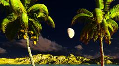 Stock Illustration of Paradise on Hawaii Island
