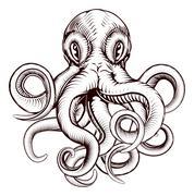 Octopus illustration Stock Illustration