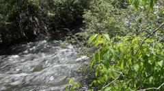 Heavy snow melt swells creek Stock Footage