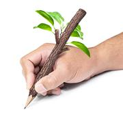 Wooden pencil in hand Stock Photos