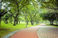 Paved path in urban park, kuala lumpur, federal territory of kuala lumpur, Stock Photos
