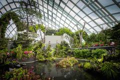 Ornate garden in greenhouse Stock Photos