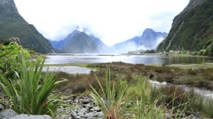 View on Milford Sound Fjord in South Island, New Zealand Stock Footage