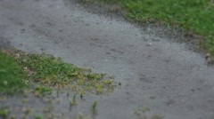 Heavy rain puddles and raindrops Stock Footage