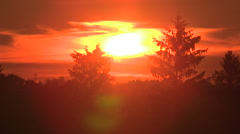 Fiery red sunset behind the trees Stock Footage