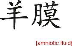 Chinese Sign for amniotic fluid - stock illustration