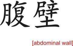 Chinese Sign for abdominal wall Stock Illustration