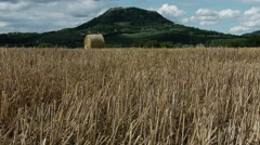 4K Harvested Grain Stems and Volcanic Hill Summer Stock Footage