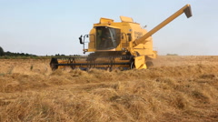 Combine harvester harvesting grass Stock Footage